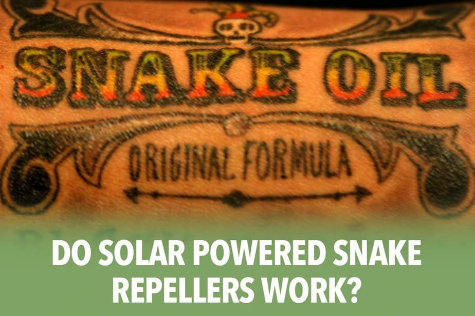 Do Solar Powered Snake Repellers Work?